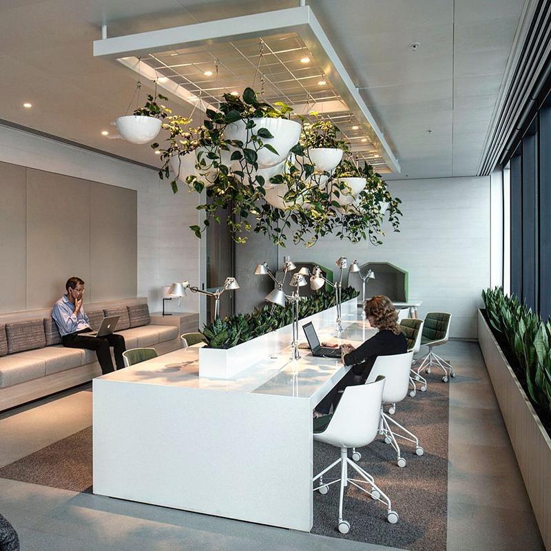 Xu hướng thiết kế văn phòng xanh thân thiện với môi trường